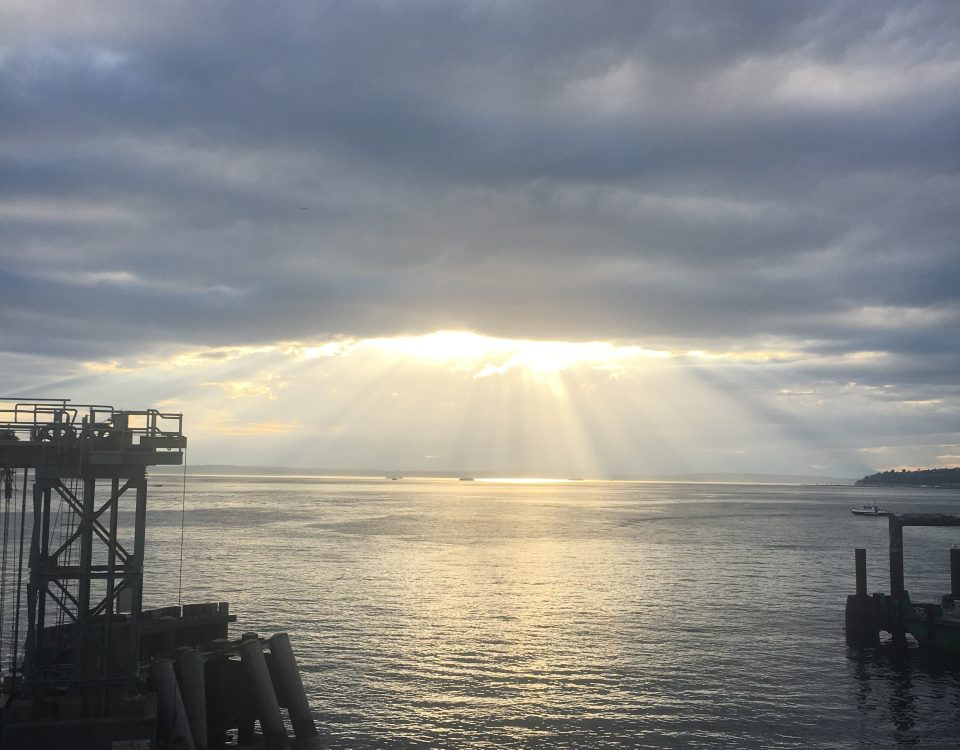 Sunlight and Gray on Bainbridge Island by Jen Pells Real Estate Agent