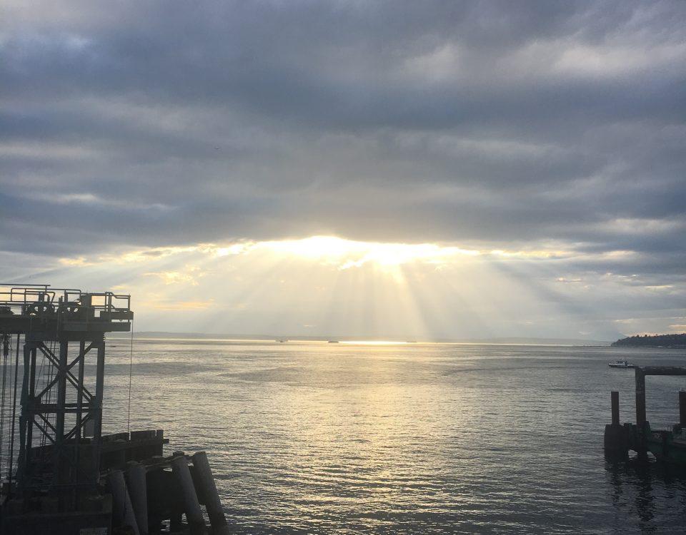 Sunlight and Gray on Bainbridge Island by Jen Pells Real Estate Agent