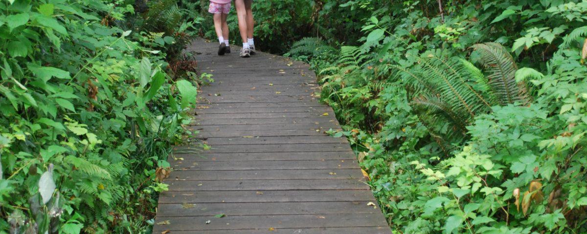 Trails on Bainbridge Island by Jen Pells Real Estate Agent