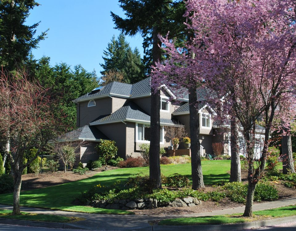 The Commodore Neighborhood on Bainbridge iIsland by Jen Pells Agent