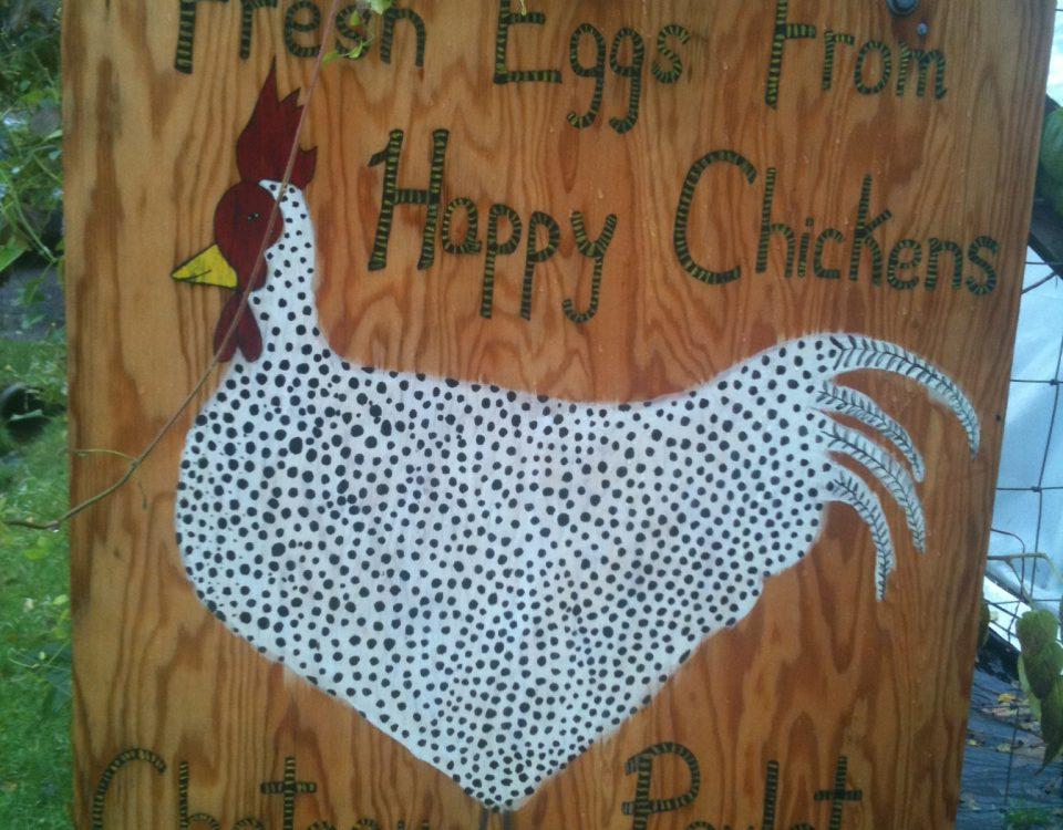 Where to buy fresh eggs on Bainbridge Island