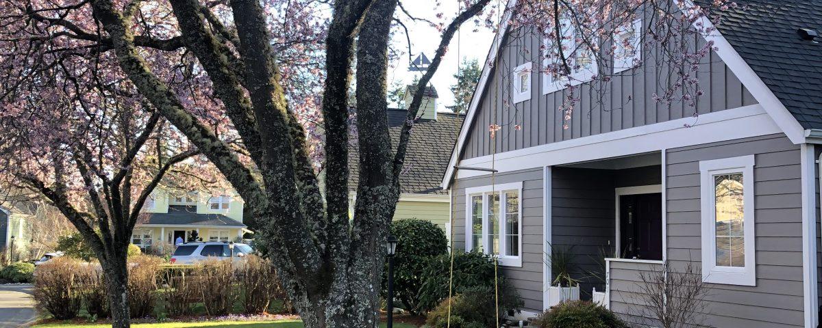 Real Estate on Bainbridge Island Jen Pells Agent