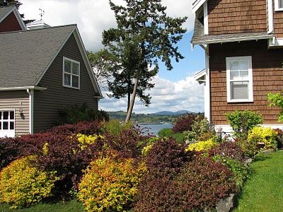 A peek at the Rich Passage view homes on Fort Ward Hill enjoy. A home just sold this month on Fort Ward Hill Road (May 2010) for $736,000. The home is just under 3500 square feet.