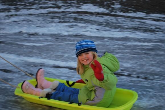 Two snow days on Bainbridge this week = two days of sledding.
