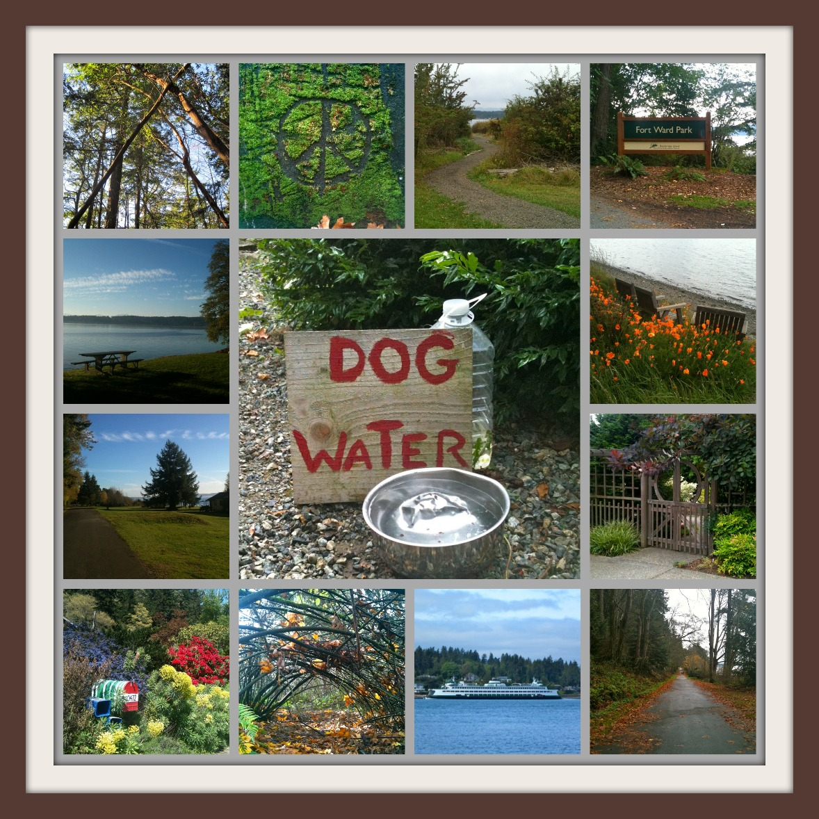 Fort Ward Walk collage - Jen Pells