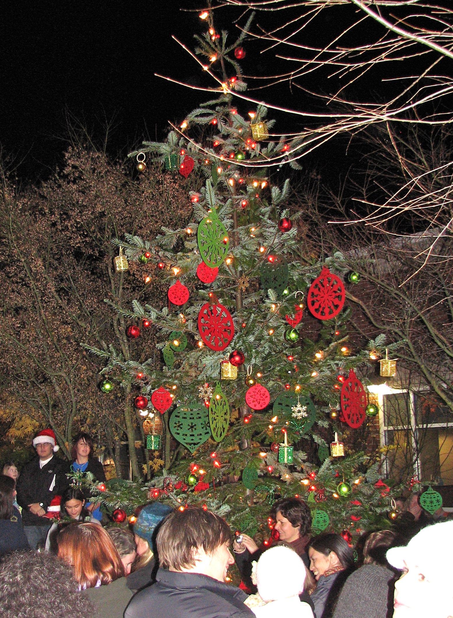 Winslow Holiday Tree