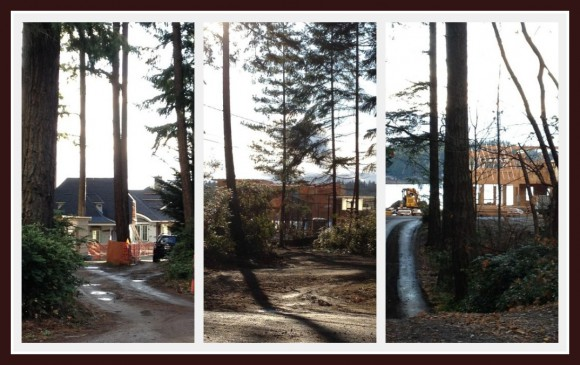 Pleasant Beach New Construction - blog post - Jen Pells