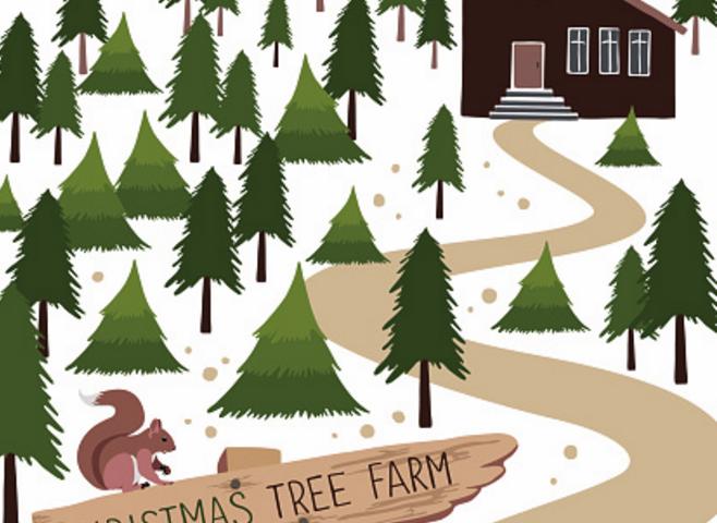 Kitsap tree farms