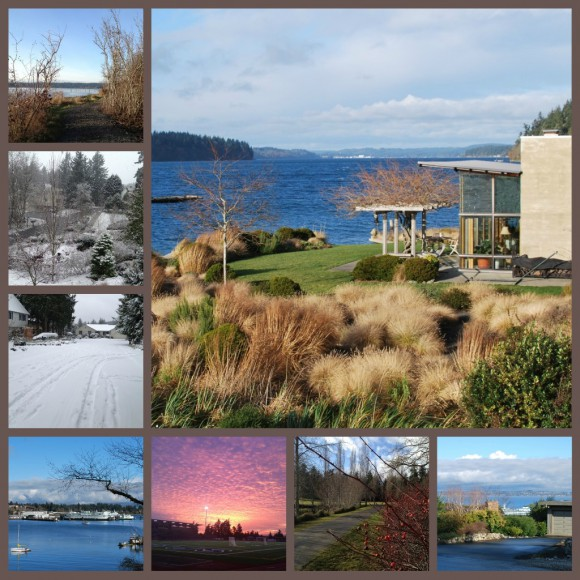 Winter 2012 on Bainbridge Island