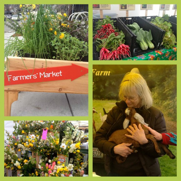 Bainbridge Island Farmer's Market collage by Jen Pells