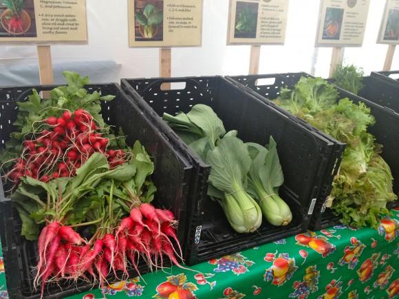 Farmer's Market Bounty on Bainbridge Island.